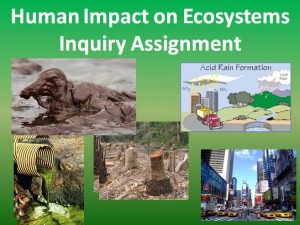 Ecosystems Assignment
