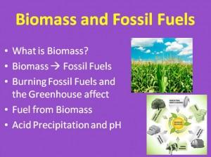 L7 Biomass