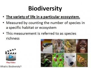 L8 Biodiversity 2