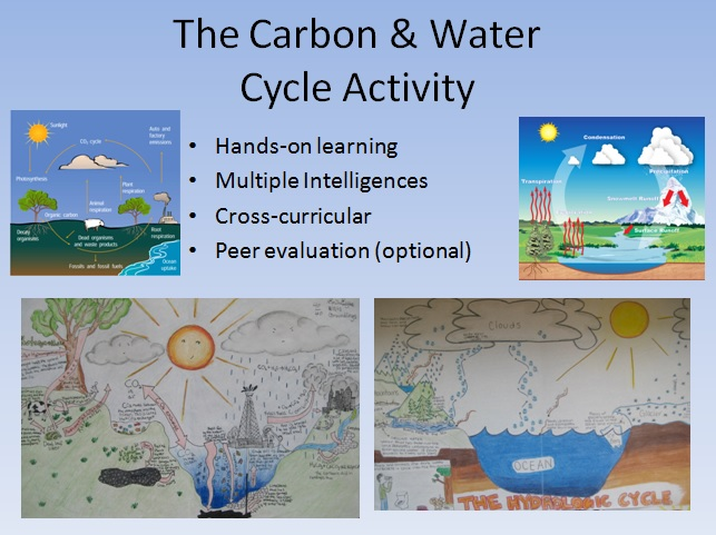Water and carbon cycle diagram activity ccuart Images