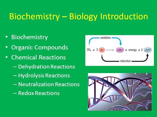 Biochemistry - Senior Biology Introduction - Teach With Fergy