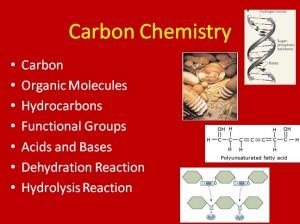 L2 Carbon 1