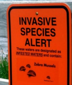 Invasive species 2