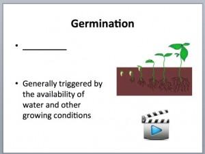 Germ 2