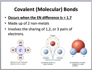 L4 Types Bonds 2