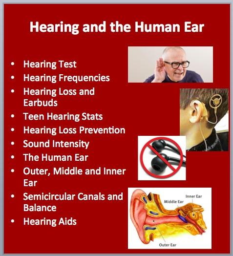 L5 Hearing 1