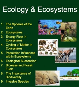 Ecology Unit 1
