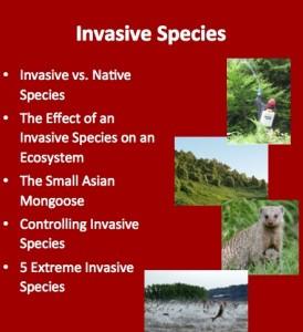 L9 Invasive 1