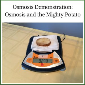 osmosis-demonstration-osmosis-and-the-mighty-potato-1