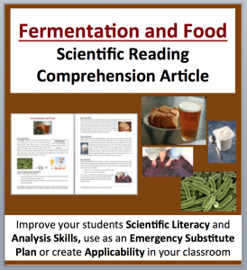 Fermentation and Food Creation